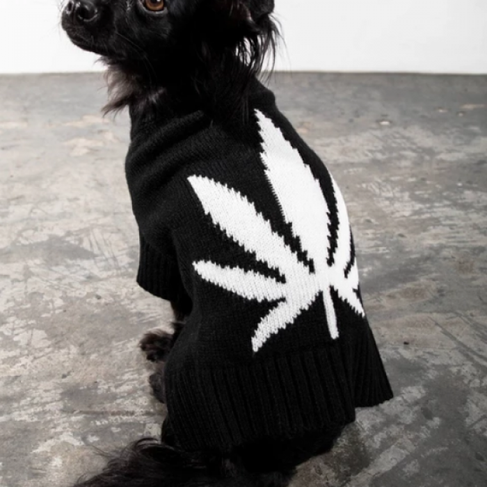 Cannabis Leaf Dog Sweater